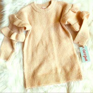 Cat & Jack toddler sweater tunic